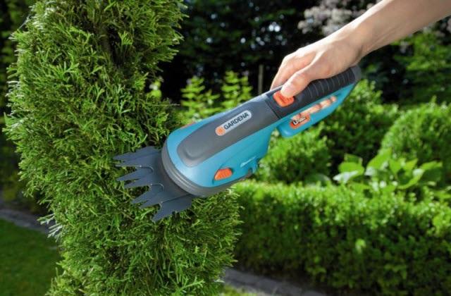 TOP 2 loại máy cắt tỉa cây cảnh chính hãng TỐT nhất mà bạn nên biết